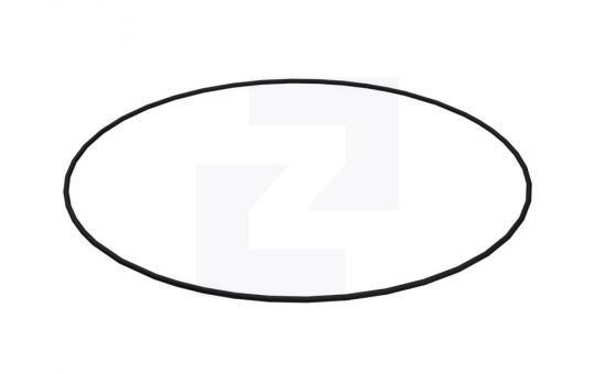 2R-0098 ущільнення кільцеве